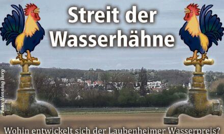 """<span class=""""entry-title-primary"""">Streit der Wasserhähne – Das erste Urteil</span> <span class=""""entry-subtitle"""">Wohin entwickelt sich jetzt der Wasserpreis?</span>"""