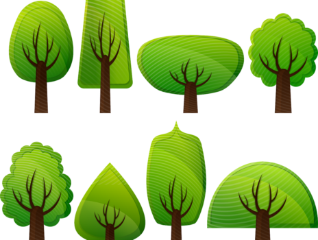 Für die Zukunft pflanzen: Baumfällungen und Neupflanzungen an der Alten Kirchstraße
