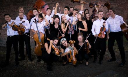 """<span class=""""entry-title-primary"""">Mein Verein … steht für Musik mit und aus Leidenschaft</span> <span class=""""entry-subtitle"""">Das Kammerorchester Laubenheim stellt sich vor </span>"""