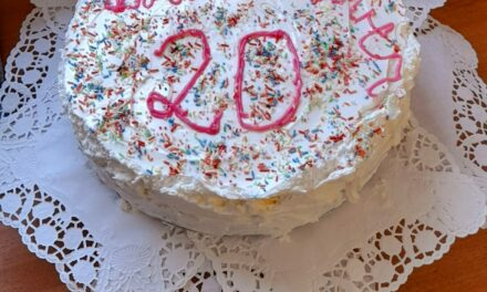"""<span class=""""entry-title-primary"""">Geburtstag mal anders</span> <span class=""""entry-subtitle"""">20 Jahre Kita Farbenzauber</span>"""