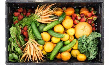 Infos zu ausgewogener Ernährung