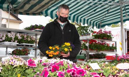 Blumenpracht und Gemüsepflanzen auf den Wochenmärkten