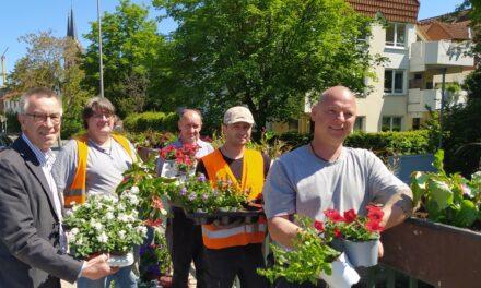 """<span class=""""entry-title-primary"""">Brücke neu bepflanzt</span> <span class=""""entry-subtitle"""">Sonnenhut, Präriekerze und Gundermann sorgen für Furore</span>"""