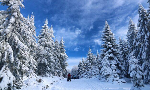 Wintersportwoche der Wanderabteilug der SKG Bauschheim