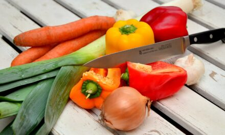 Infos zu abwechslungsreichem Kochen
