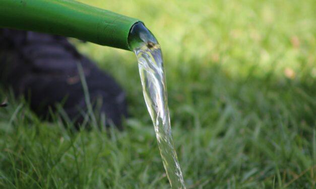Illegale Wasserentnahme bedroht Lebensraum für Pflanzen und Tiere
