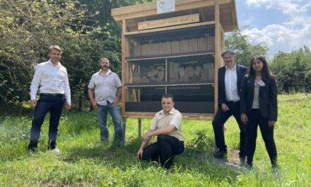 """Erstes Wildbienenhotel eingeweiht: """"Summende Bienen Bude"""" (SBB)"""