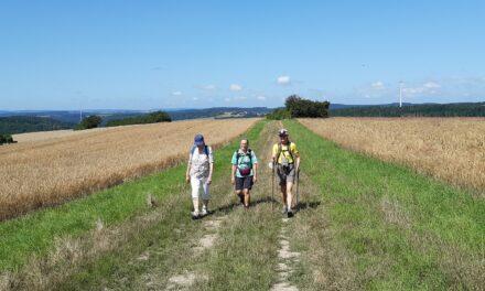 """<span class=""""entry-title-primary"""">SKG Bauschheim</span> <span class=""""entry-subtitle"""">Freizeit-plus Wanderung auf dem Wisper Trail """"Schwälbchens' Flug"""" am 18.07.2021</span>"""