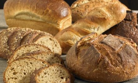 Hier wird noch traditionell gebacken – Landbäckerei Mayer in Lörzweiler überzeugt mit Handarbeit