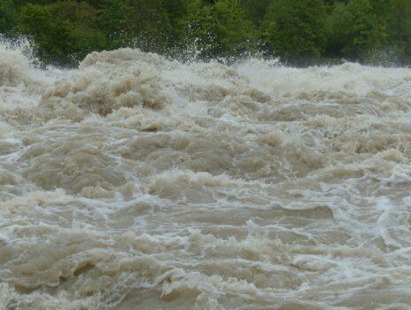 Benefizkonzerte für die Opfer der Flutkatastrophe
