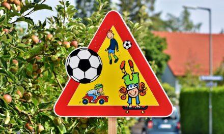 Straßenschilder und Gehwege freischneiden