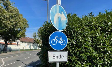 """<span class=""""entry-title-primary"""">Mehr für die Umwelt tun</span> <span class=""""entry-subtitle"""">Die CDU Bodenheim fordert Aufwertung von Ausgleichsflächen und Verbesserungen der alternativen (E-)Mobilität </span>"""