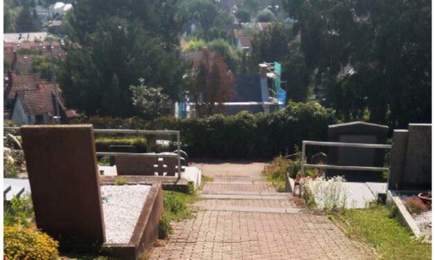 """<span class=""""entry-title-primary"""">Auf ein Neues … 2. Treppenanlage auf dem Laubenheimer Friedhof wird erneuert</span> <span class=""""entry-subtitle"""">Pflasterarbeiten im Anschluss/ Zugang zu den Gräbern bleibt jederzeit gewährleistet</span>"""