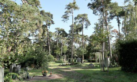 Öffentliche Führung zu Geschichte und Geschichten auf dem Waldfriedhof