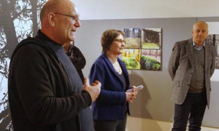 Neue Perspektiven aus dem Rüsselsheimer Stadtwald