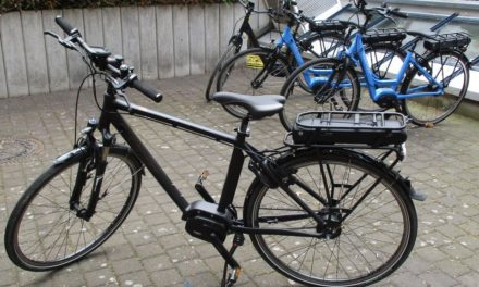 "<span class=""entry-title-primary"">Die neuen E-Bikes sind da</span> <span class=""entry-subtitle"">Verleihsaison im Stadtmuseum startet</span>"
