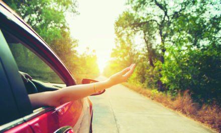 Rund-um-Check fürs Auto