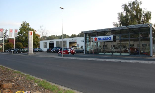 """<span class=""""entry-title-primary"""">Ihr Partner für alle Marken</span> <span class=""""entry-subtitle"""">Autohaus Hafenstrasse in Oppenheim</span>"""