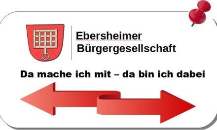 """<span class=""""entry-title-primary"""">Umsetzung sozialer und gesellschaftspolitischer Projekte</span> <span class=""""entry-subtitle"""">Ehrenamtliche Untertützung öffentlicher Aufgaben</span>"""