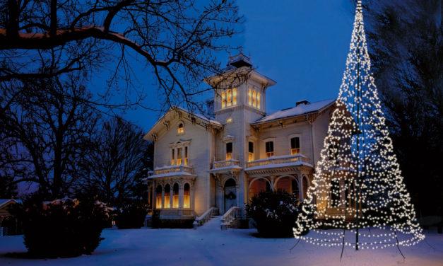 """<span class=""""entry-title-primary"""">Der Garten wird zum Winterwunderland – Wetterfester Weihnachtsbaum ist im Nu aufgebaut und sorgt für Stimmung</span> <span class=""""entry-subtitle"""">x</span>"""