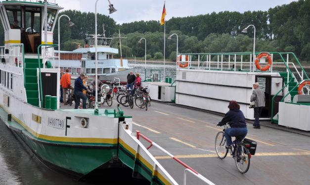 """<span class=""""entry-title-primary"""">Rheinhessen mit dem Rad erleben</span> <span class=""""entry-subtitle"""">Neue Wege der Lebenslust</span>"""