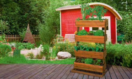 """<span class=""""entry-title-primary"""">Gärtnern aus Leidenschaft – Vertikales Hochbeet schafft viel Platz für junges Gemüse</span> <span class=""""entry-subtitle"""">x</span>"""