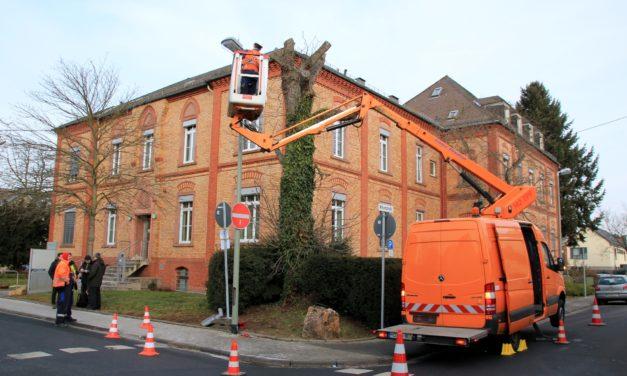 "<span class=""entry-title-primary"">Modernes LED-Konzept spart Energie und entlastet Umwelt</span> <span class=""entry-subtitle"">Syna erneuert Straßenbeleuchtung in Hochheim</span>"