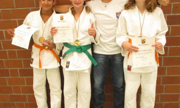 """<span class=""""entry-title-primary"""">Landesmeisterschaft im Judo: Erstmals Gold und Doppelbronze für die TuS 06 Nackenheim</span> <span class=""""entry-subtitle"""">Bitte Untertitel eingeben</span>"""