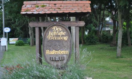 """<span class=""""entry-title-primary"""">Der """"fröhliche Weinberg"""" feiert</span> <span class=""""entry-subtitle"""">Vorfreude auf das Nackenheimer Weinfest vom 29. Juli bis 1. August 2016</span>"""