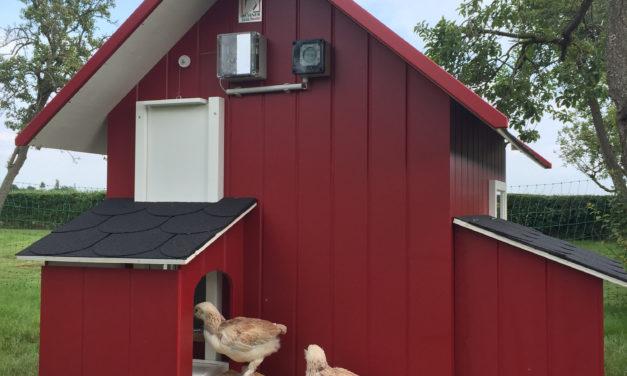 """<span class=""""entry-title-primary"""">Weihnachtsgeschenk der nachhaltigen Art – Mobiles Hühnerhaus übernimmt Eierproduktion und Rasenpflege in einem</span> <span class=""""entry-subtitle"""">x</span>"""